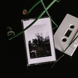 Silvia Cignoli – The Wharmerall